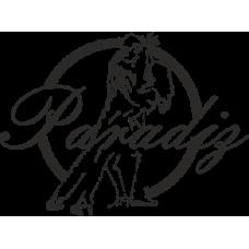Парадиз - клуб спортивного  танца