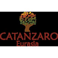 Катанзаро Евразия