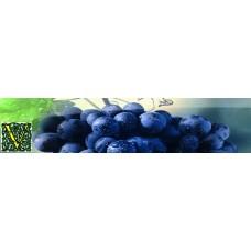 Виноделы